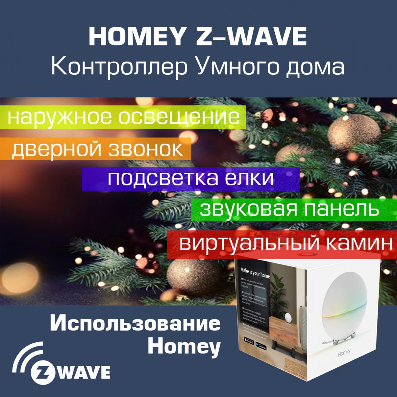 Homey_WinterHolidays